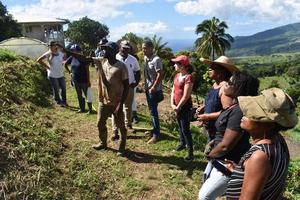 Visit to an organic farm in Martinique