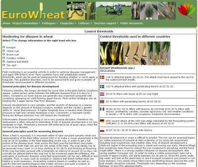 management the disease guide wheat